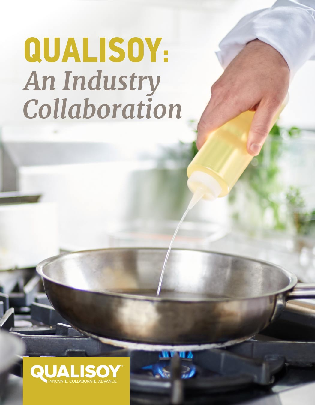 QUALISOY: Where Collaboration Meets Innovation